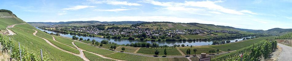 Panorama-Blick auf den Moselort Brauneberg und die umliegenden Weinberge.