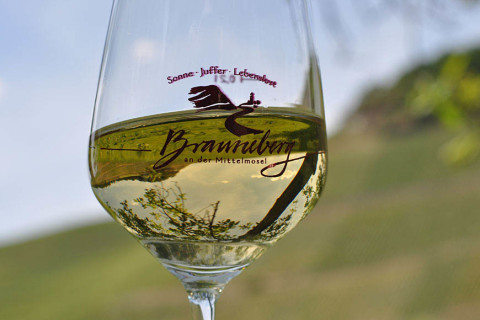 Vineyards are reflected in a glass of Riesling.