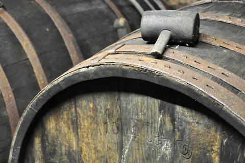 Im Weinkeller vergären die Trauben in Eichenfässern.